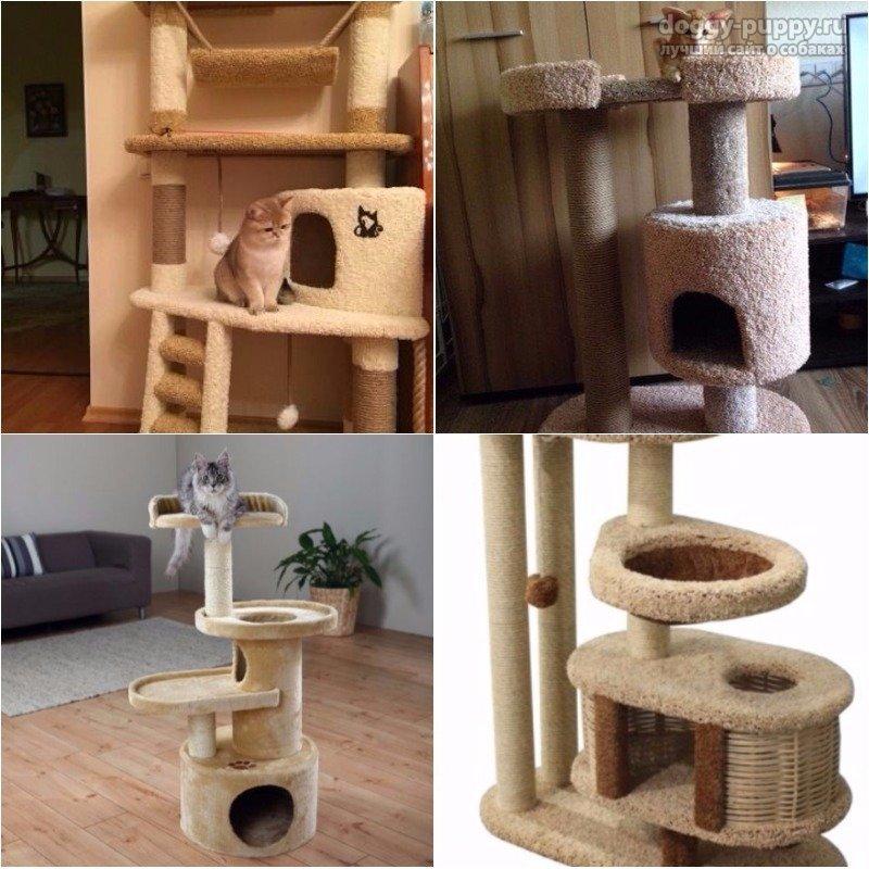 Домик когтеточка для кошек как сделать своими 190