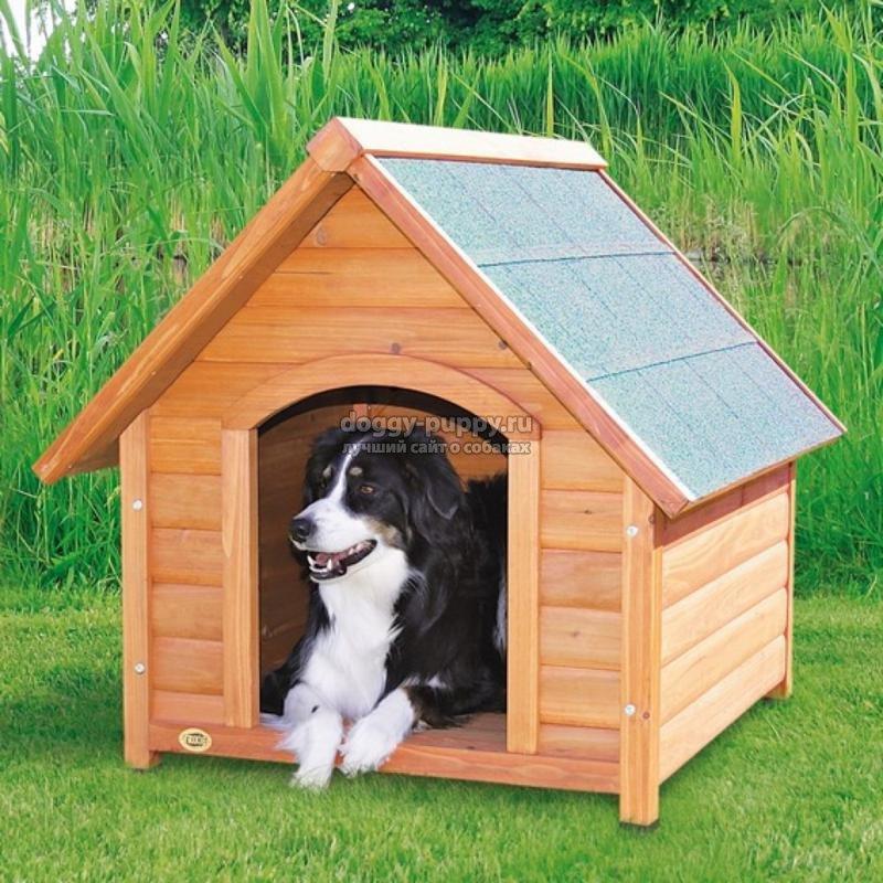 будка для собаки своими руками: как сделать