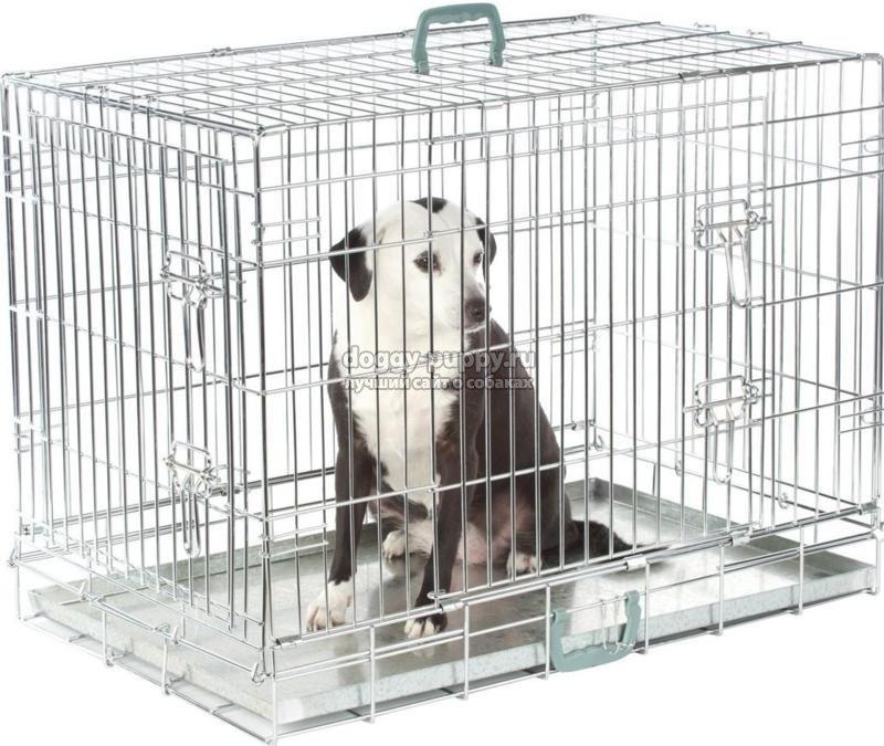 клетки для собак: виды, фото и описание