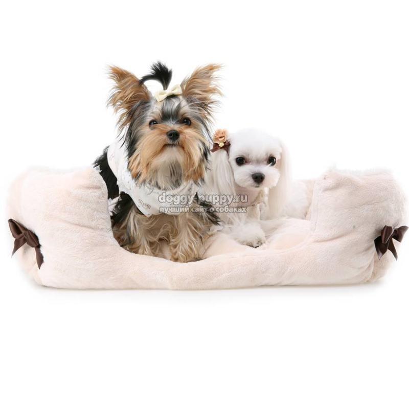 лежанка для собаки своими руками. Лучшие идеи