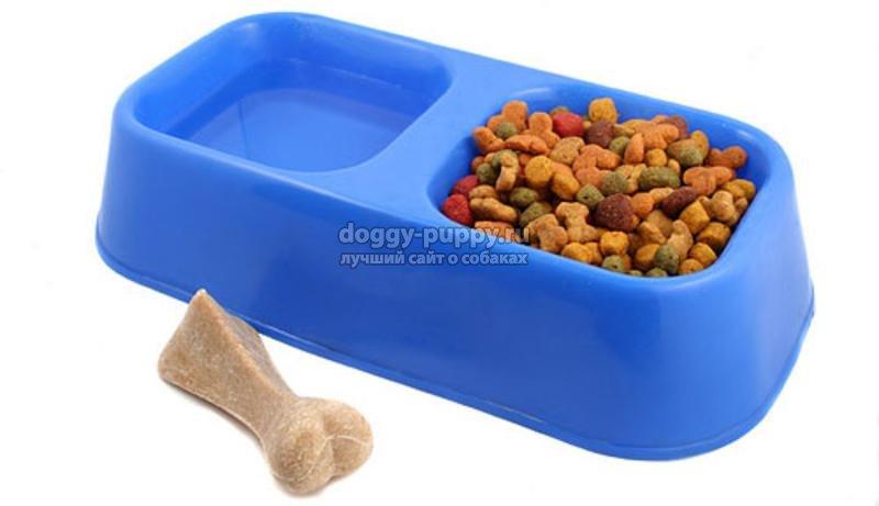 сухой корм для щенков: как перейти, какой выбрать
