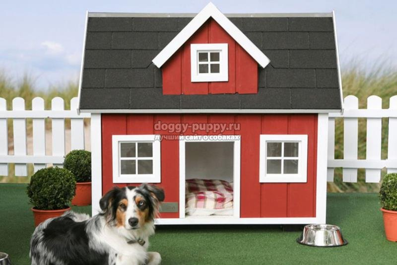 домик для собаки: как сделать своими руками