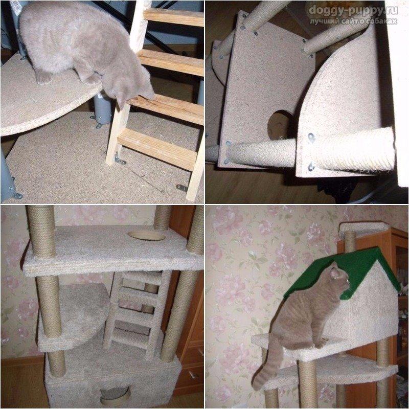 Как сделать домик для кошки своими руками. Пошаговые мастер-классы с фото