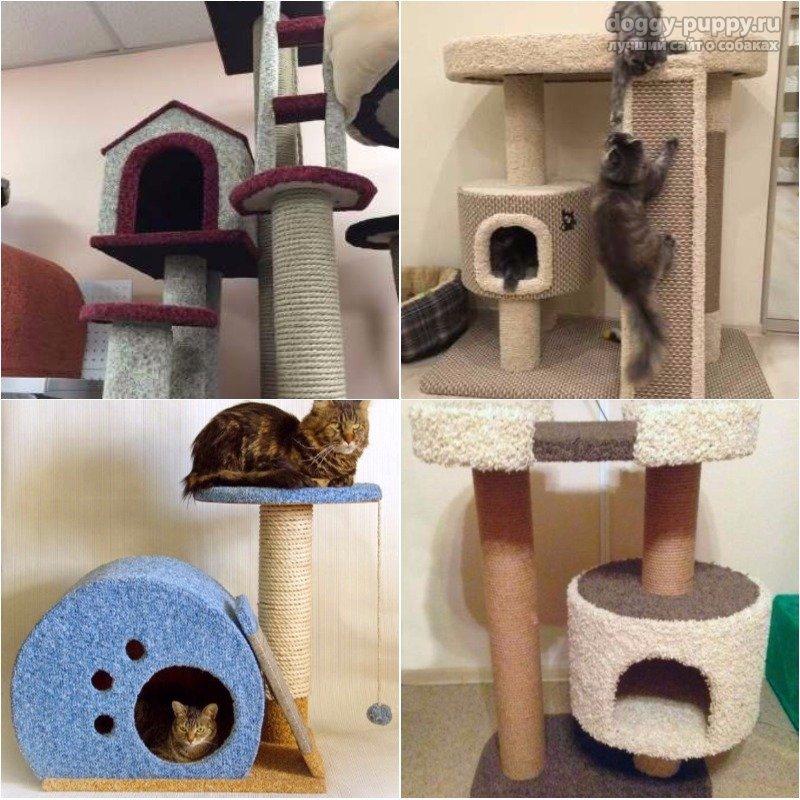 Домики когтеточки для кошек: виды и описание. Делаем своими руками