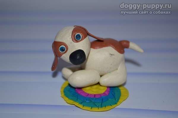 Собака на коврике
