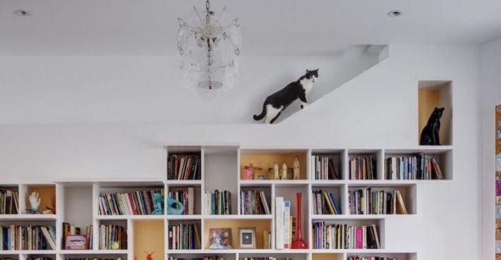 Домики для кошек: что подобрать своему питомцу