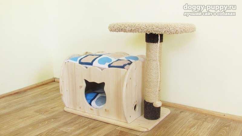 когтеточка для кошки фото
