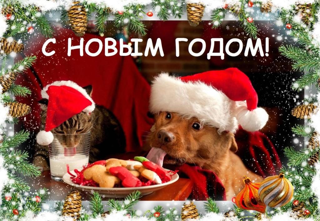 открытка поздравление в год собаки
