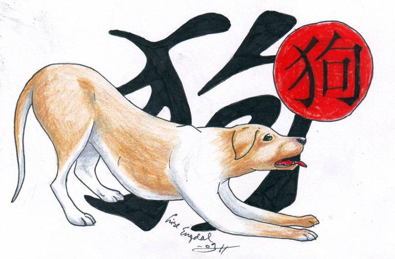 собака по китайскому гороскопу