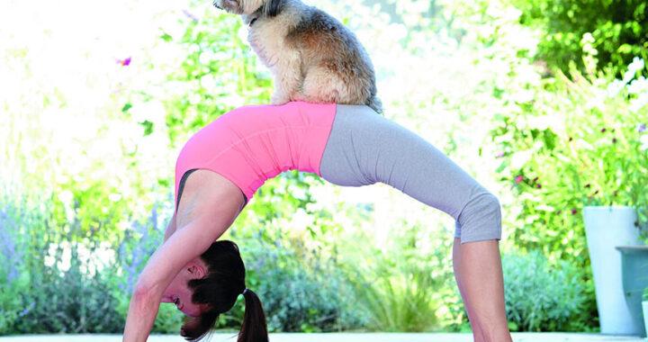йога с собакой