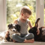 Что нужно учитывать при выборе домашних животных для детей