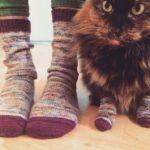 Правила ношения и выбора носков